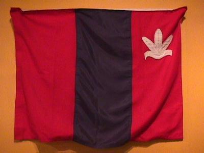 Flag, Parihaka
