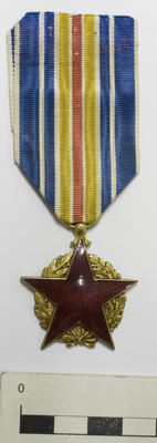 Medal, For The Military Wounded