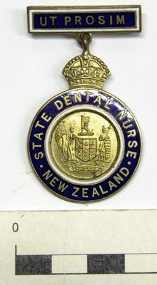 Badge, Dental Nurse's