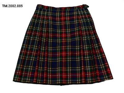 Skirt, School