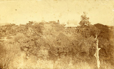 Te Henui Vicarage and Captain J.C. Cooke's House