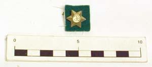 Badge (Girl Guides)