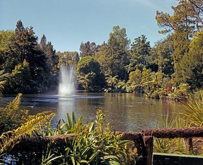 Pukekura Park, Landscape