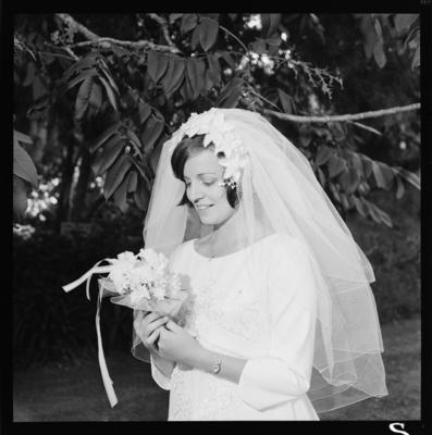 Bailey, Wedding