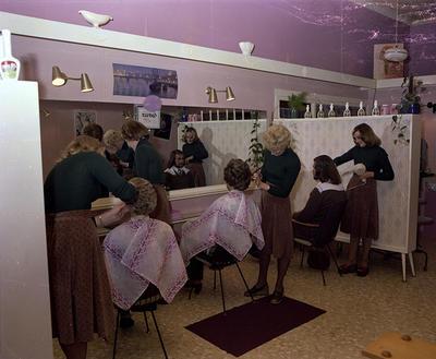 Renee Hairstyles, Group