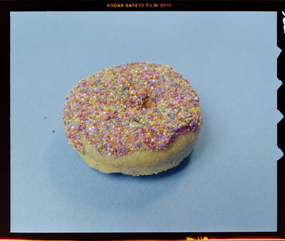 Yarrows, Doughnut