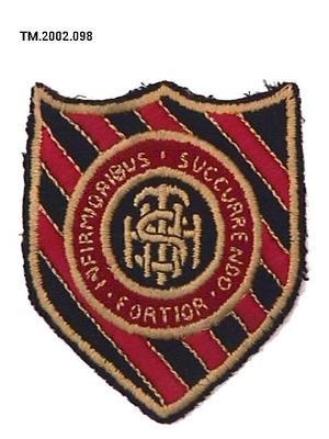 Badge, Cloth