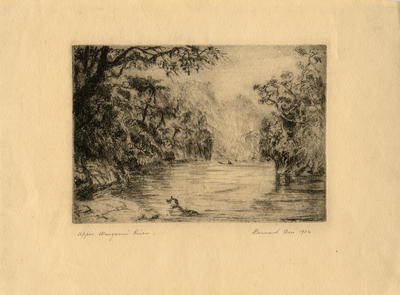 """Upper Wanganui River"""