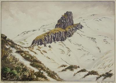 """""""'Humphries Castle', Mt Egmont"""""""