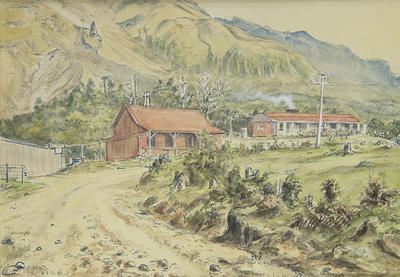 """""""Cottage & Old House, Mt Egmont"""""""