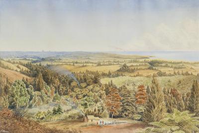 """""""View of North Waitara""""; Circa 1884; A66.106"""