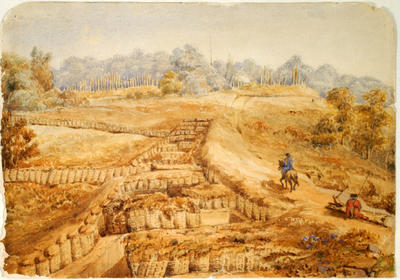 """""""The Limit of the Sap at Te Arei""""; 19 Mar 1861; A75.439"""
