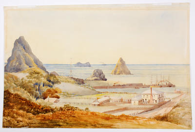 Untitled [Moturoa]; Circa 1880s; A65.899