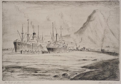 """""""The Port of New Plymouth"""""""