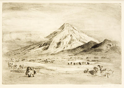 Untitled [Mount Taranaki]