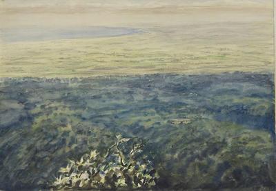 Untitled [View from Mount Taranaki]