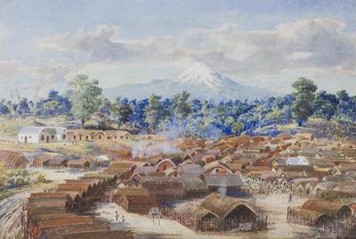 """""""Parihaka""""; TM2000.246"""