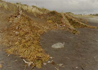 Beach Restoration Scheme; Circa 1979-1984; 1870-1879; 1880-1889; ARC2002-706