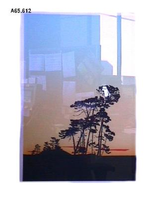 """Minarapa Rd, Sunset"""
