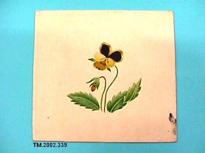 Untitled (flower); TM.2002.339