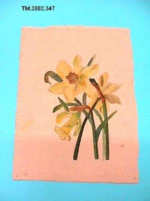 Untitled (Daffodils)