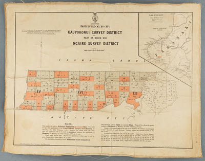 Parts of Blocks XV & XVI Kaupokonui Survey District and part of block XIII Ngaire Survey District. 1881