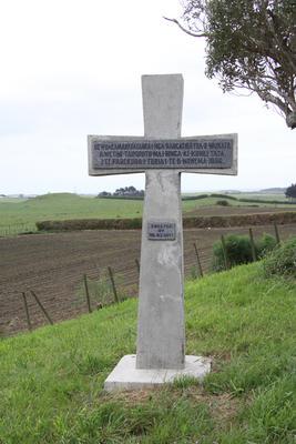 Memorial cross, Māhoetahi, Waitara; 23 Nov 2009; PHO2009-362