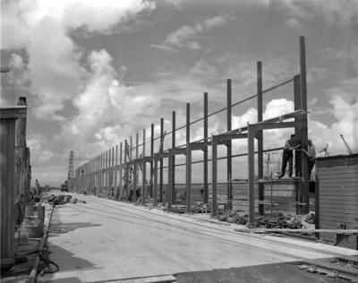 Moturoa Wharf Reconstruction 1955-1957