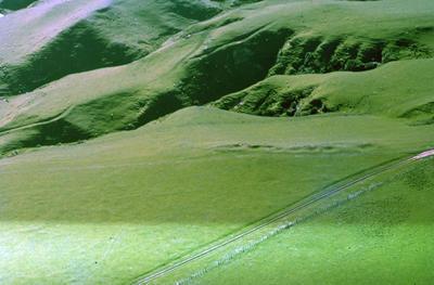 Quarry, Mokoia