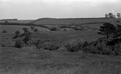 Okahu-titi pā, Normanby; Circa Sep 1960; AGB-0297
