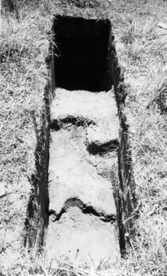 Kumara Kaiamo pā, SQ F4 (c) - F4 (d), Urenui; Jan 1962; AGB-1322