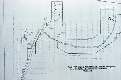 Olsson swamp excavation, plan of swamp, Waitara