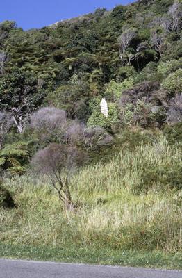 River channel guide marker, Mōkau