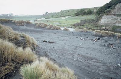 Moa hunter excavation site, Kaupokonui; May 1974; PHO2011-0734