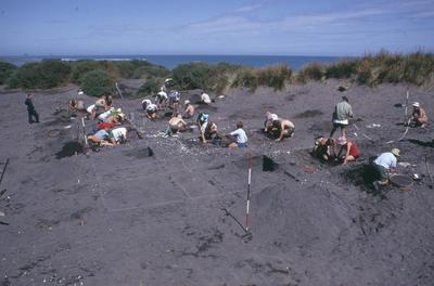 Puketapu excavation, Bell Block
