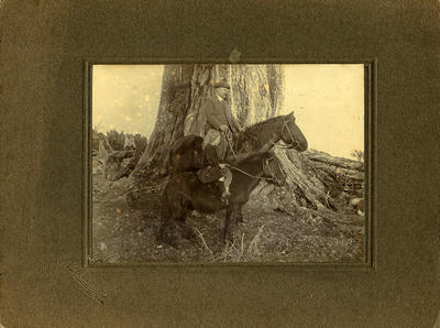 William Swadling and his daughter Doris at the Largest Rata Tree in the Kaponga District, Swadling Farm
