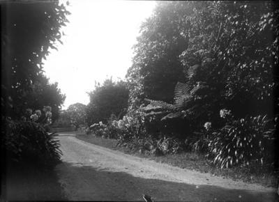 Brooklands; Jan 1890; PHO2015-0033