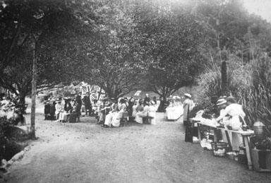 Garden Party, Pukekura Park, New Plymouth