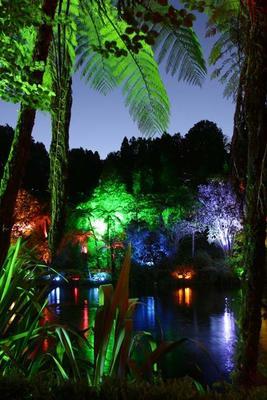 """""""Festival of Lights at Pukekura Park"""""""