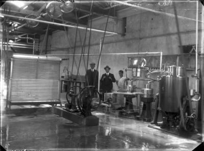 Pihama Co-Operative Dairy Factory