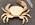 Black-fingered crab